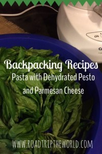 Dehydrated Pesto For Backpacking