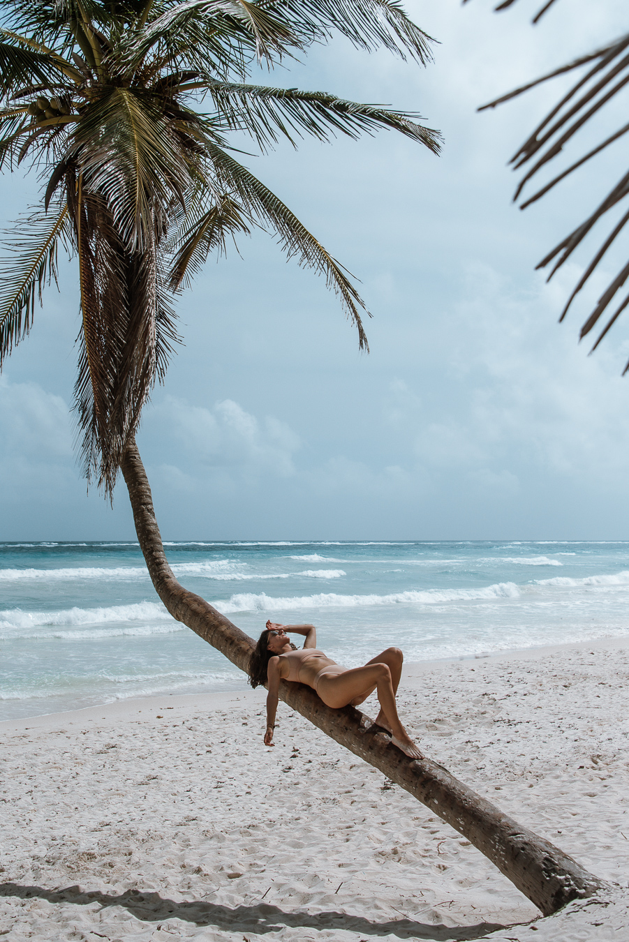 Woman lying on a palm tree in Tulum