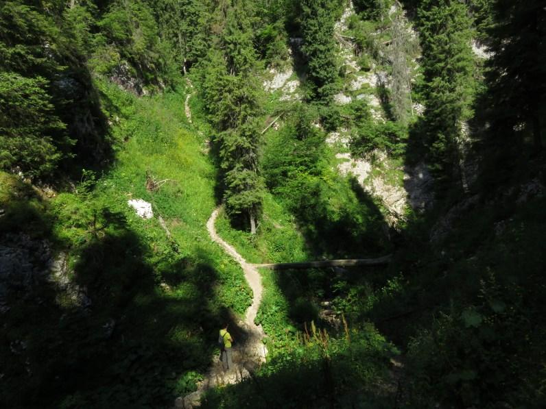 Up past Cetatile Radesei cave