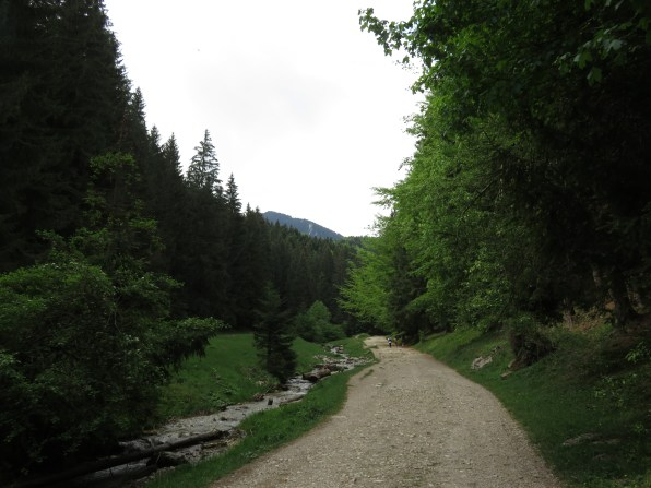 The path leading up to the gorge
