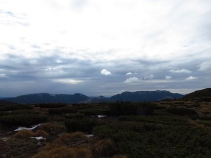The main ridge