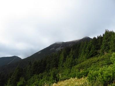 Towards Negoiu and Pietrosul