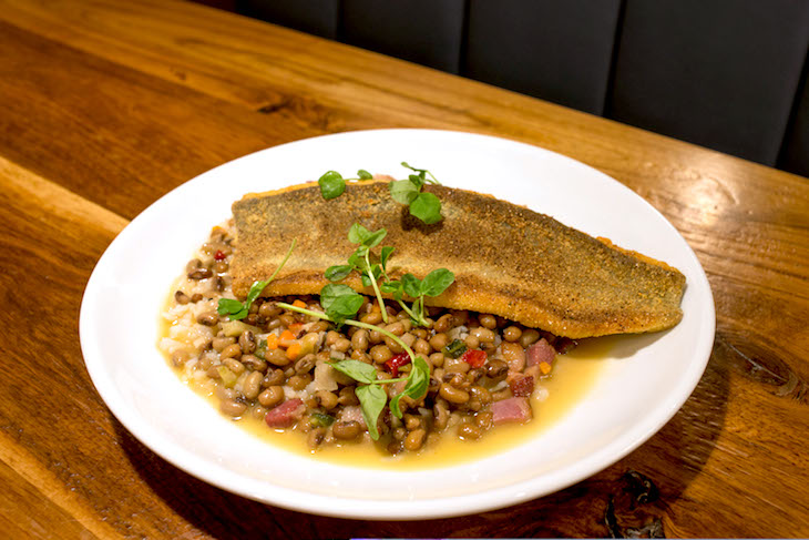 noble fin atlanta norcross restaurant review