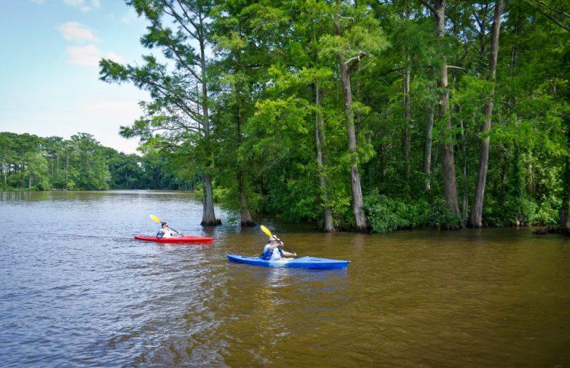 Kayaking in Edenton