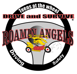 Drive and Survive™ Teen Safety and Responsibility Training Course