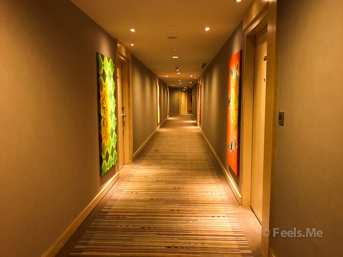 DoubleTree by Hilton Johor Bahru Walkway to our room