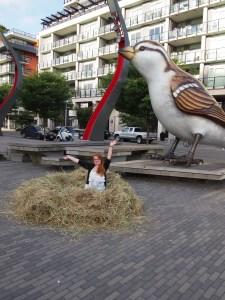 Build a nest in a upscale neighborhood, nest in it.