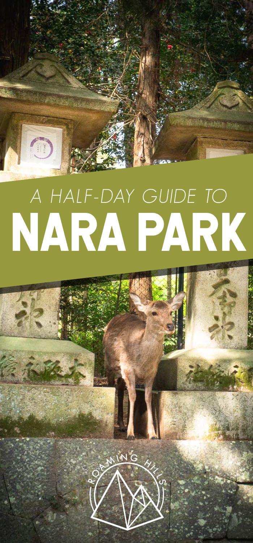 A Half Day Guide to Nara, Japan - Roaming Hills
