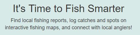 FISHIDY-1