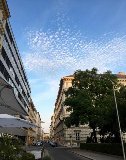 Popcorn clouds.