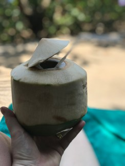 Fresh coconut cocktails