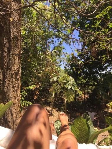 """Jungle-bathing"""
