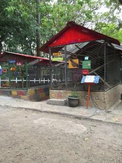Costa Rica Animal Rescue Centre