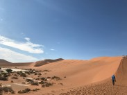 Truly beautiful sand!