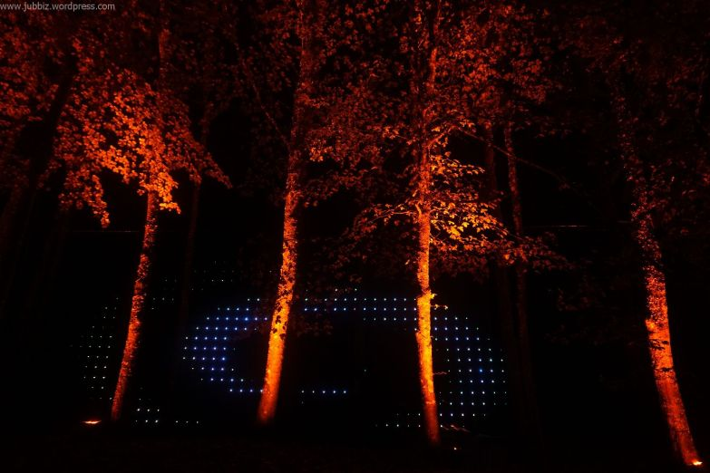 Enchanted Forest_47
