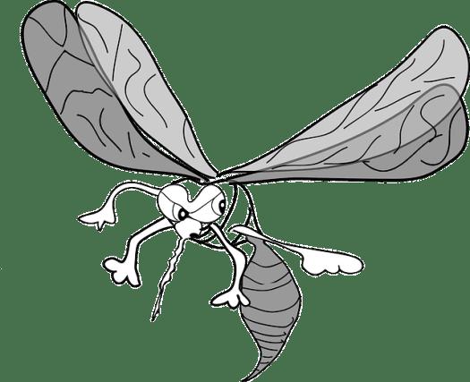 mosquito-48547_640