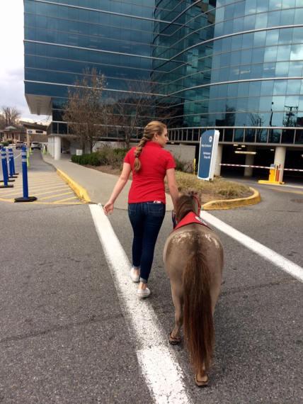 Cash and Sarah visit Carilion Memorial Hospital in Roanoke regularly.