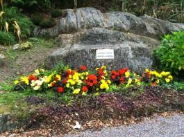 Cononagh mass rock