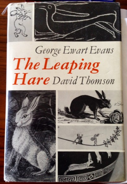Leaping Hare front