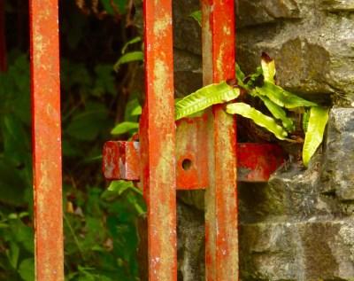 Gate, Bishop's Luck