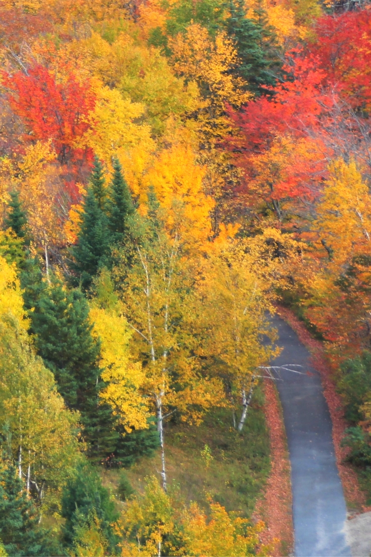 Latest Fall Winter Makeup Trends 2017 18 Beauty Tips Must: The Best Colors Of Fall In New Hampshire