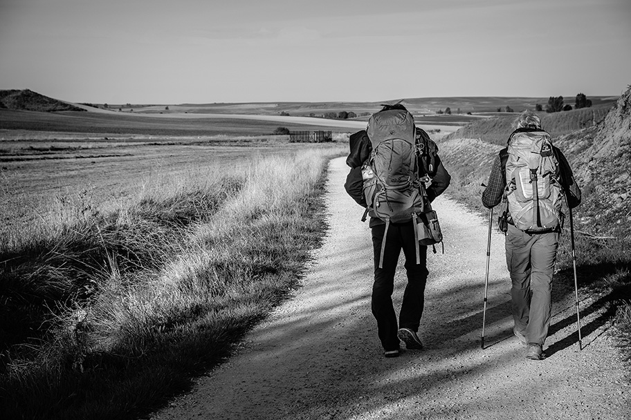 Walk the French Way: A Journey through Camino Frances - RoarLoud