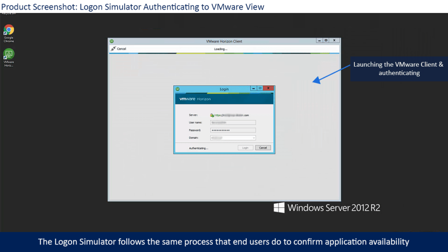 VMware Logon simulation