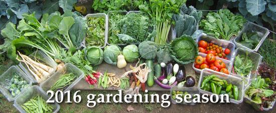 2016 gardening season image