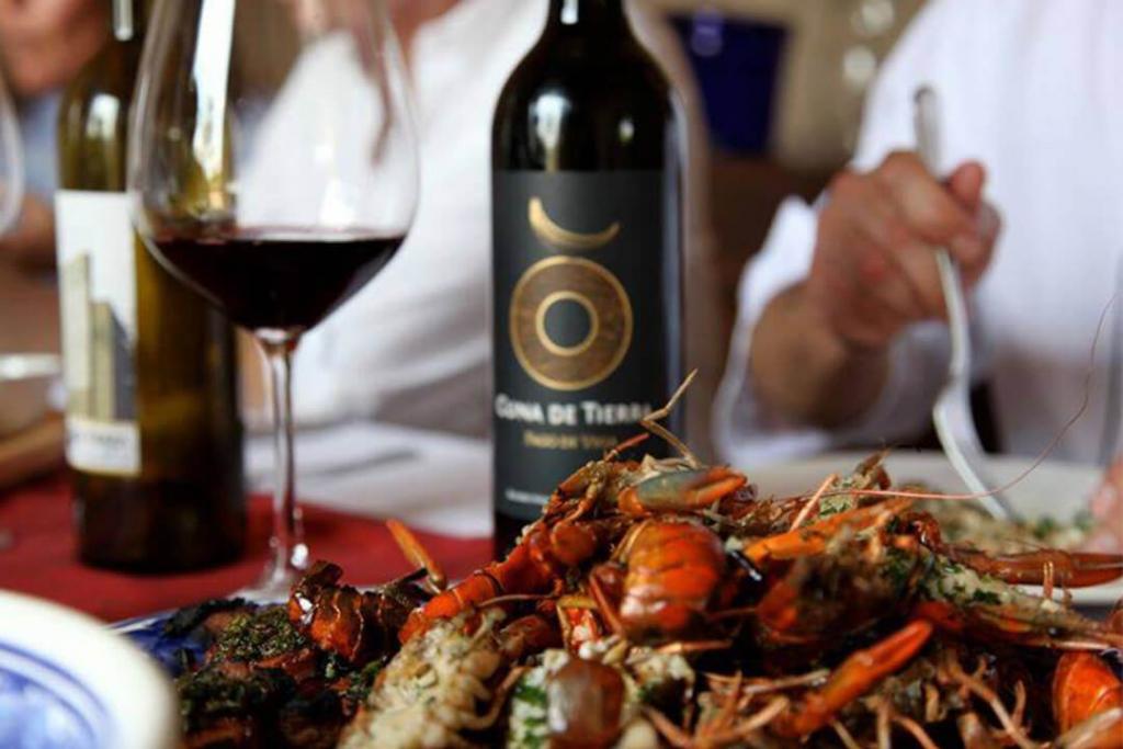 cuna 4 1024x683 - Cuatro experiencias en Cuna de Tierra para amantes del vino