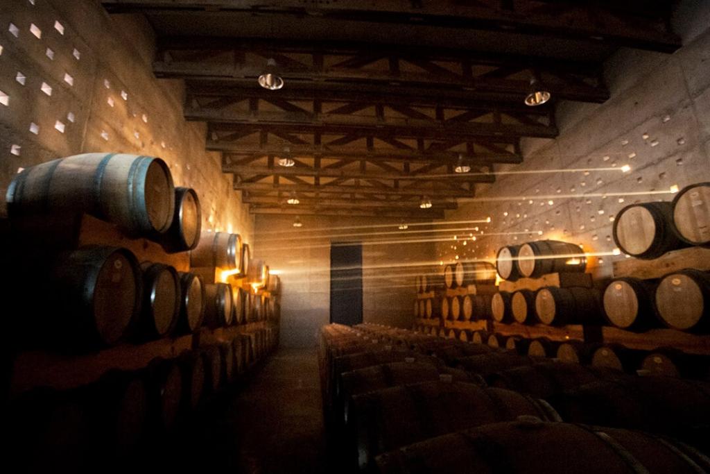 cuna2 1024x683 - Cuatro experiencias en Cuna de Tierra para amantes del vino