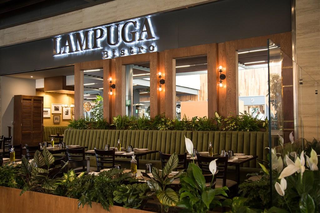 Lampuga Bistro se convertirá en tu restaurante favorito de Polanco
