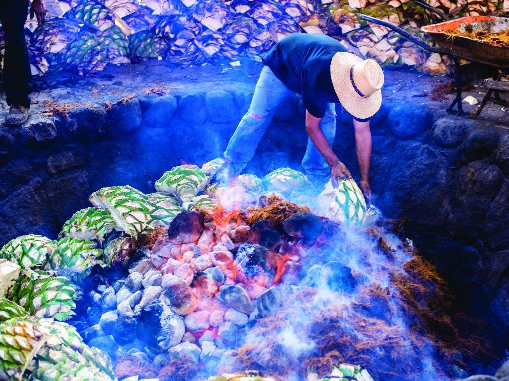 Oaxaca con Mezcal Amores