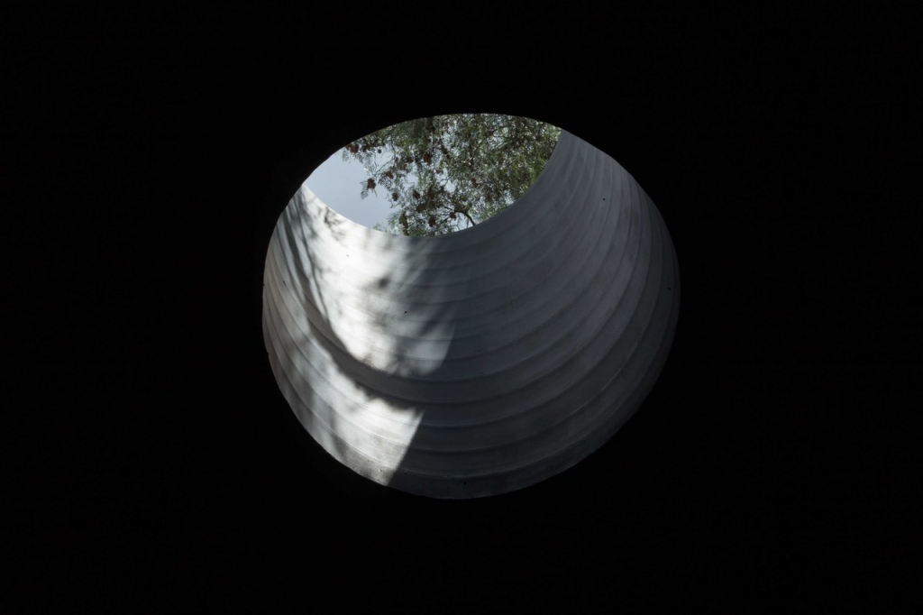 MG 3394 1024x682 - El talento de Pablo Vargas Lugo brillará en la Bienal de Arte de Venecia