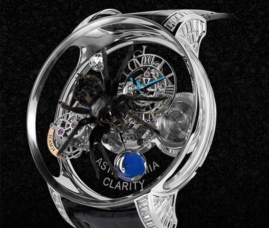 Este sorprendente reloj alberga una tarántula en su interior