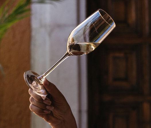 ¿Qué NO hacer cuando tomas tequila (si quieres convertirte en un conocedor)?
