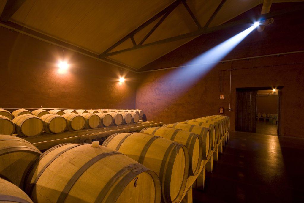 Conviértete en experto en envejecimiento de vino con Ribera del Duero