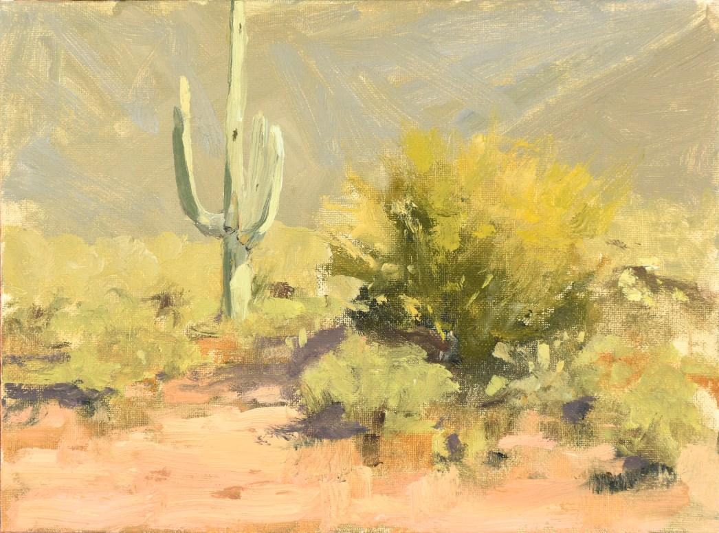 Sahuaro and Palo Verde study