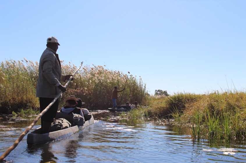 Okavangno Delta on a mokoro with G Adventures Africa