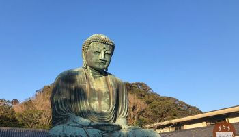 鎌倉大佛非常非常高