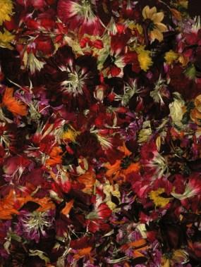 Maundy Thursday Flowers
