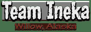 Team-Ineka-Logo