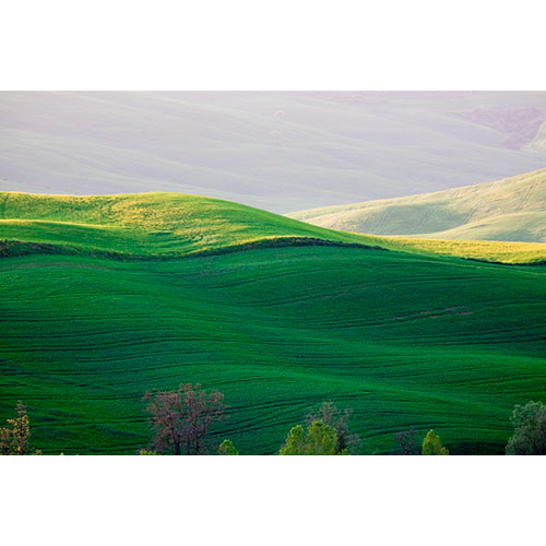 Rolling Hills, Tuscany, Italy