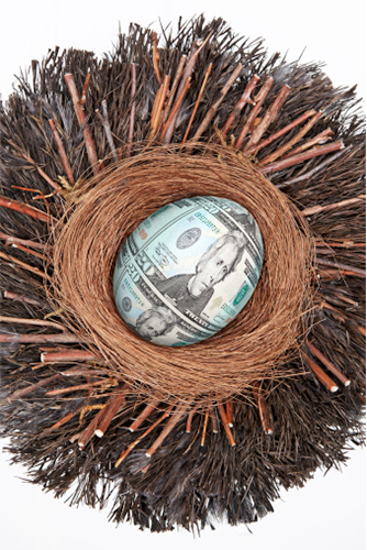 US dollar egg in nest