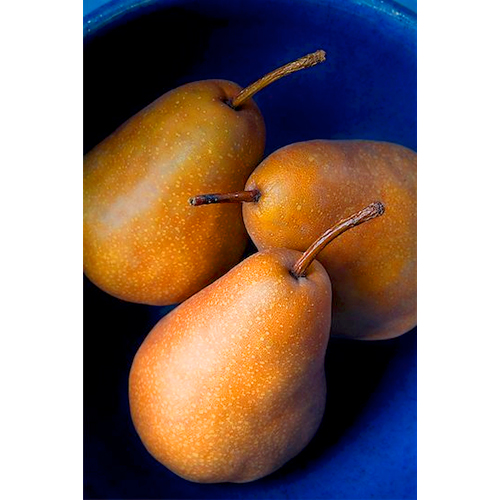 golden pears in blue bowl
