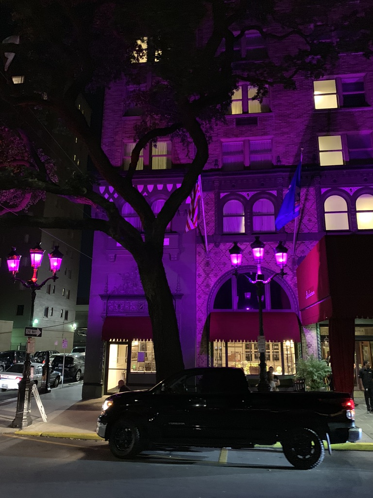 Purple lighted traditional house - New Orleans