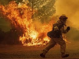 California fires 1