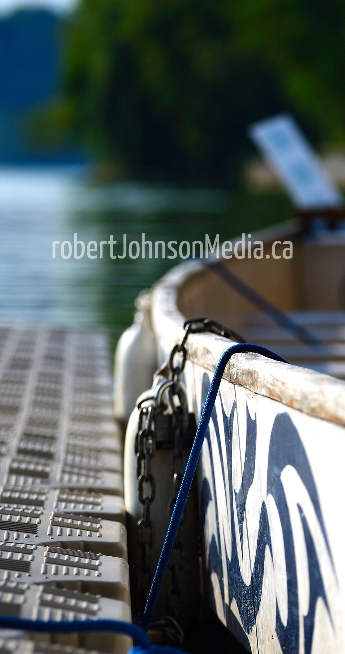Dragon boat race robert johnson hamilton ontario