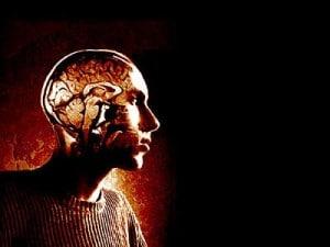 Cerebro-chico