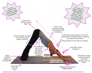 asana-tip-8-graphic