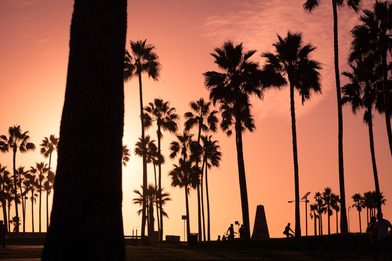 Los Angeles ⎮ Venice Beach